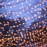 Viedeň, Vianoce