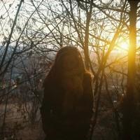 Správy spod lesa