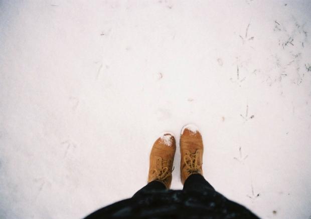 stopy_v_snehu
