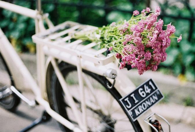 kvety_na_bicykli