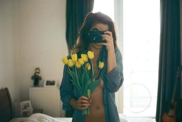 tulipany_kosela