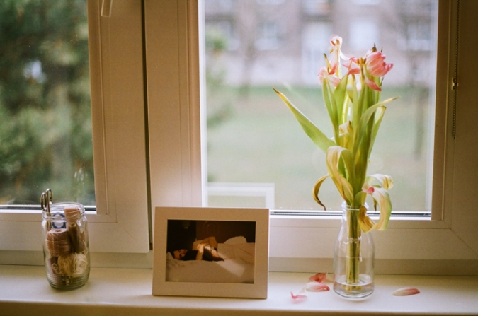 zvadnute_tulipany