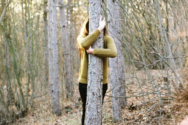objimat_stromy