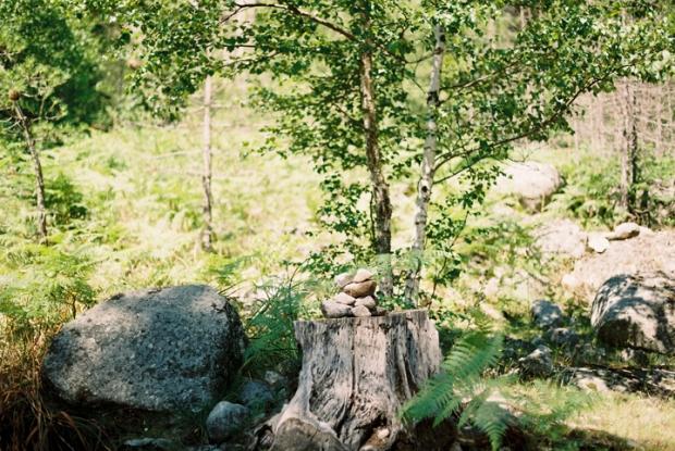 kamene_na_ceste_v_lese