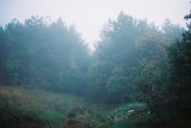 autumn_fog