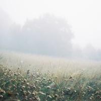 Biele ráno