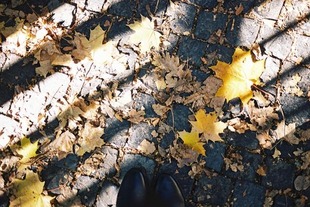 jesenne_listy_na_chodniku