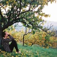 Prebudená jeseň