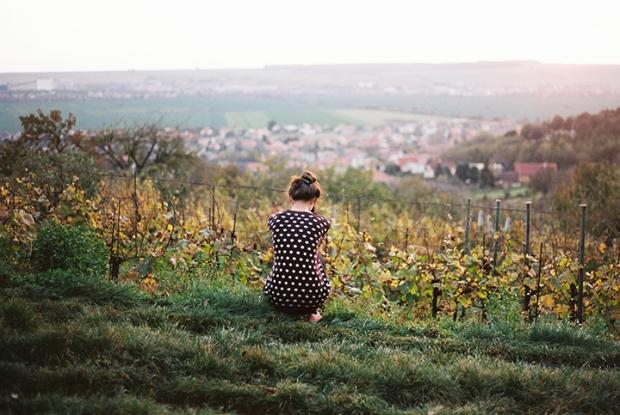 vinice_jesen