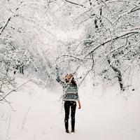 Zapadnuté snehom