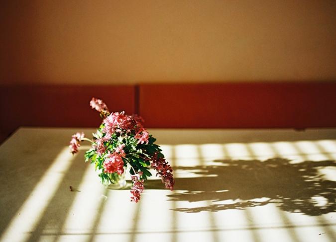 fialove-kvety-v-kuchyni