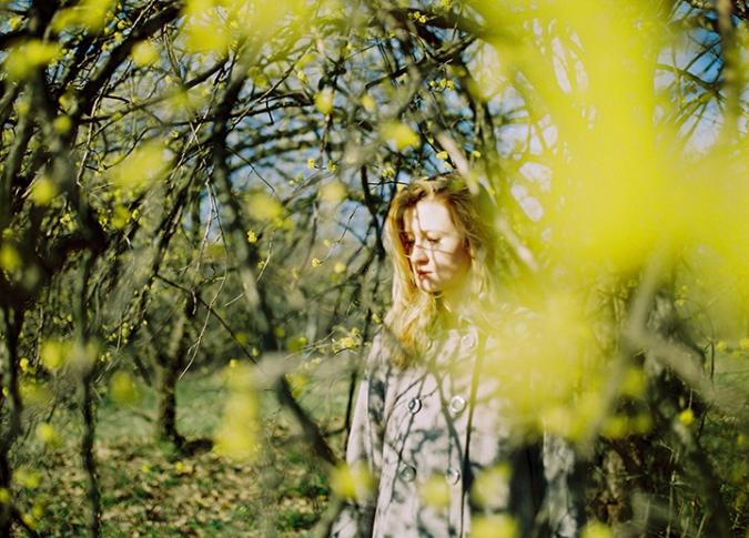 zlte_kvety_strom
