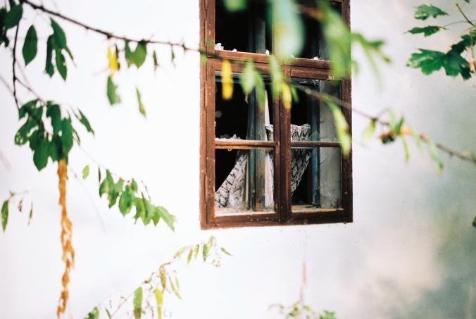 rozbite-okno