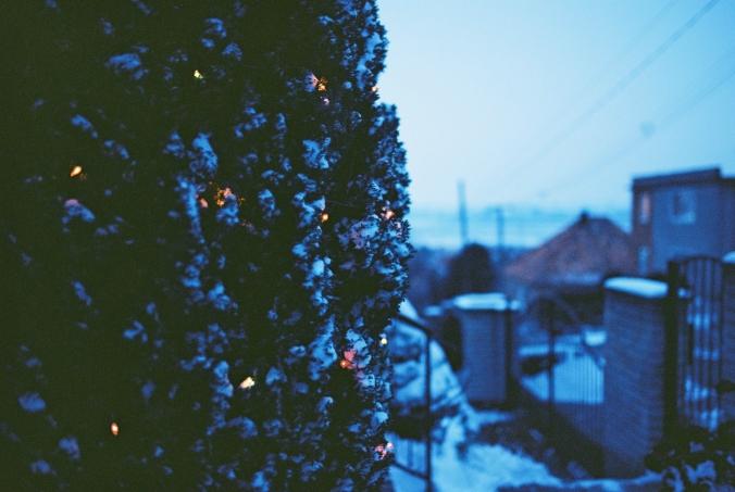 sneh-na-stromoch