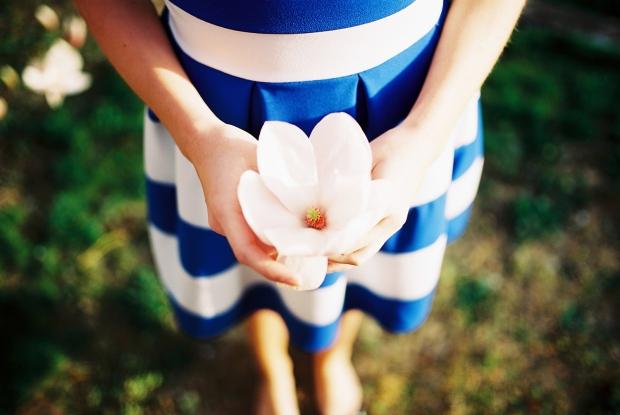magnolia-jarny-kvet
