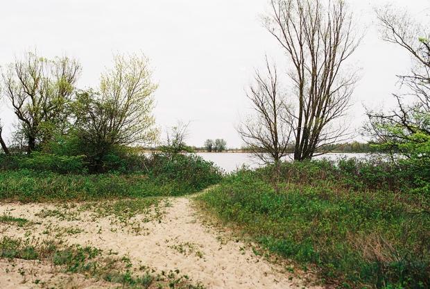 27-rezerwat-przyrody-mewia-lacha
