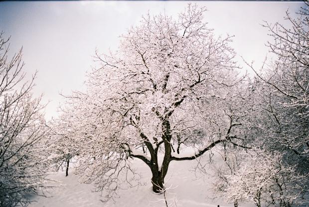 zima-v-stiavnici
